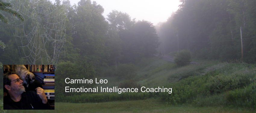 Carmine Leo - Emotional Intelligence Coaching and Training