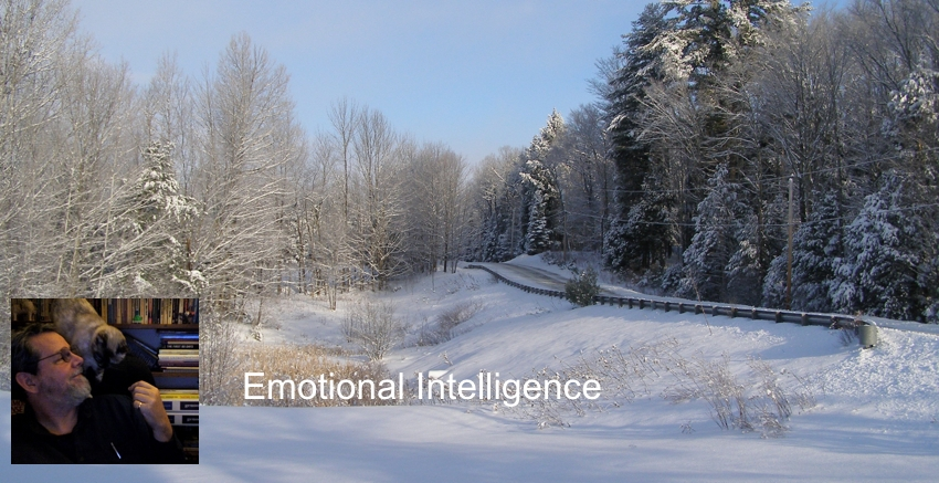 Emotional Intelligence Defined