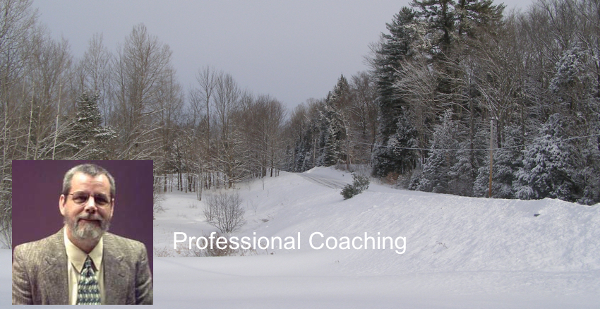 Professional Coaching In Emotional Intelligence